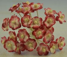1.3cm RED IVORY DOUBLE-LAYERED Daisy Mulberry Paper Flowers